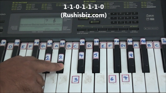 """""""G# / Ab"""" Major Scale Positions"""