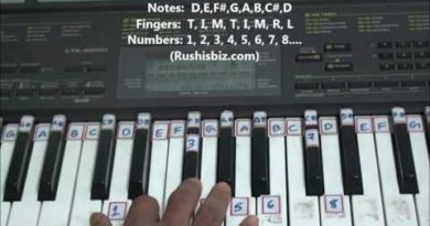 'D' Major Scale - Right hand finger pattern for Single Octave